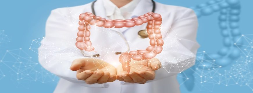 3 Key Factors You Must Consider When Trying to Improve Gut Health