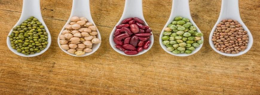 7 High Protein Foods for Vegetarians: Plus Supplement Options