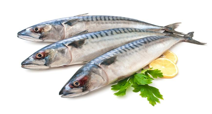 Times in Your Life You May Need More Omega 3