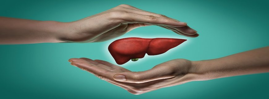 Which Foods Are Good For Liver Regeneration? And Other Tips