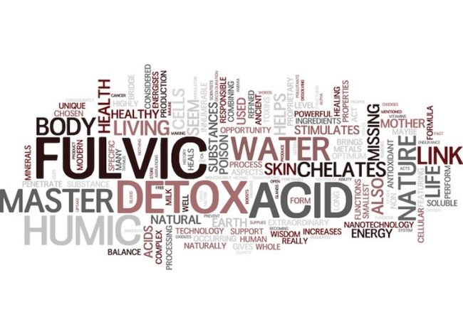Fulvic Acid: Why Is It So Important to Your Health and Wellbeing?